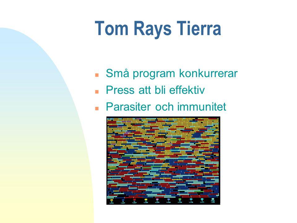 Tom Rays Tierra n Små program konkurrerar n Press att bli effektiv n Parasiter och immunitet