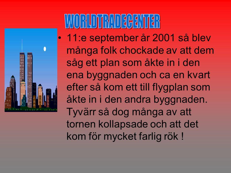 •11:e september år 2001 så blev många folk chockade av att dem såg ett plan som åkte in i den ena byggnaden och ca en kvart efter så kom ett till flygplan som åkte in i den andra byggnaden.