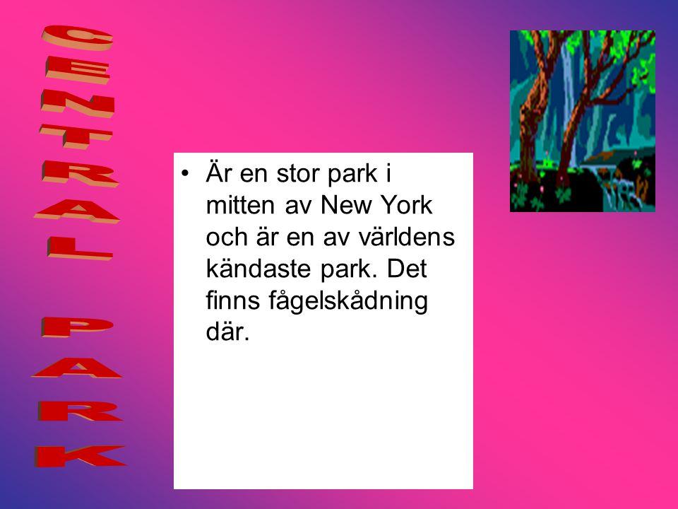 •Är en stor park i mitten av New York och är en av världens kändaste park.