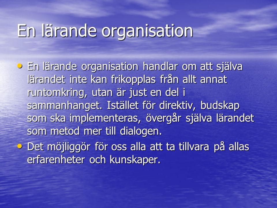 En lärande organisation •E•E•E•En lärande organisation handlar om att själva lärandet inte kan frikopplas från allt annat runtomkring, utan är just en del i sammanhanget.