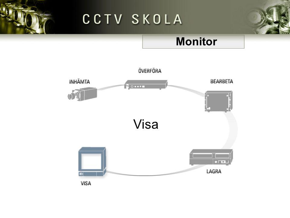 Monitor Visa