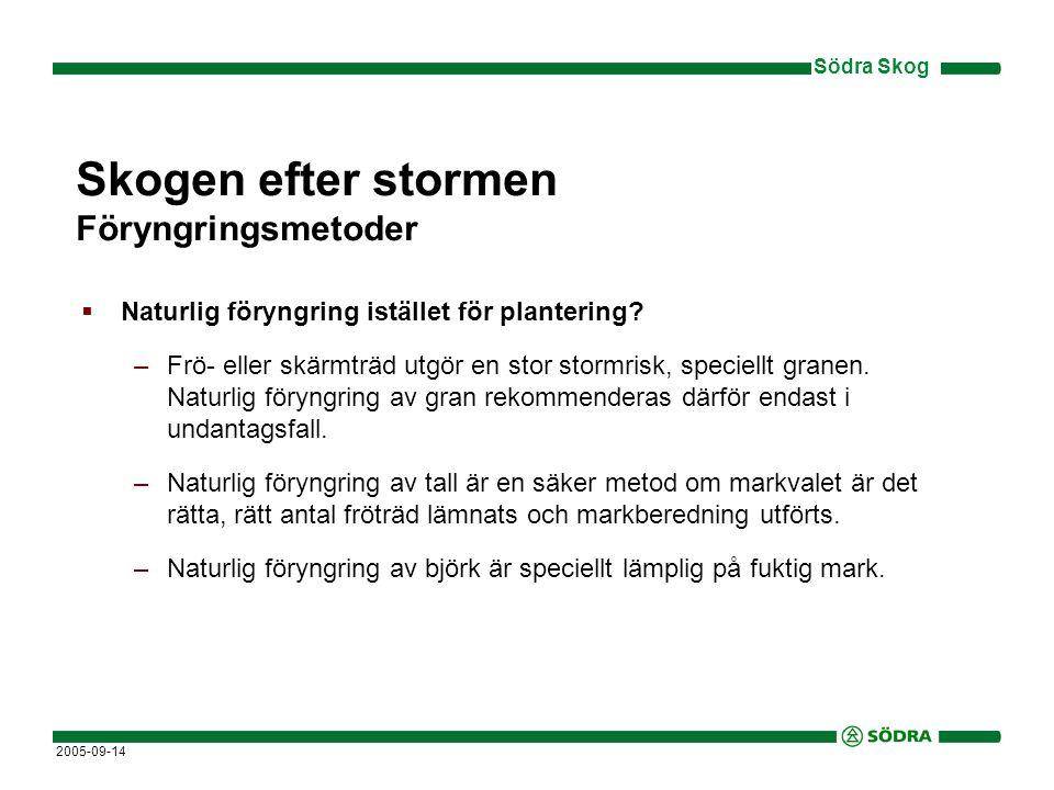 Södra Skog 2005-09-14 Skogen efter stormen Föryngringsmetoder  Naturlig föryngring istället för plantering.
