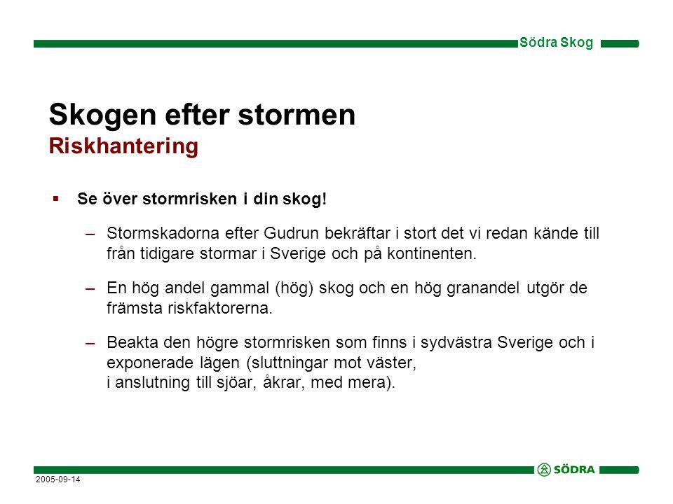 Södra Skog 2005-09-14 Skogen efter stormen Riskhantering  Se över stormrisken i din skog.