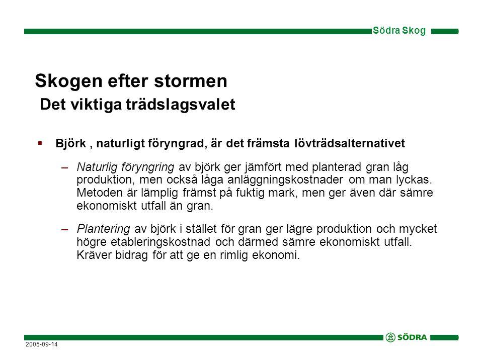 Södra Skog 2005-09-14 Skogen efter stormen Det viktiga trädslagsvalet  Björk, naturligt föryngrad, är det främsta lövträdsalternativet –Föryngring av gran under björkskärm kan ge en total produktion i nivå med planterad gran.