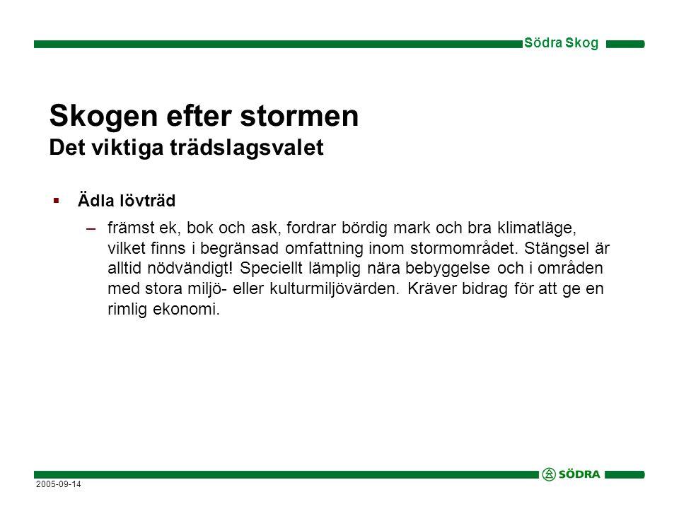 Södra Skog 2005-09-14 Skogen efter stormen Det viktiga trädslagsvalet  Ädla lövträd –främst ek, bok och ask, fordrar bördig mark och bra klimatläge, vilket finns i begränsad omfattning inom stormområdet.