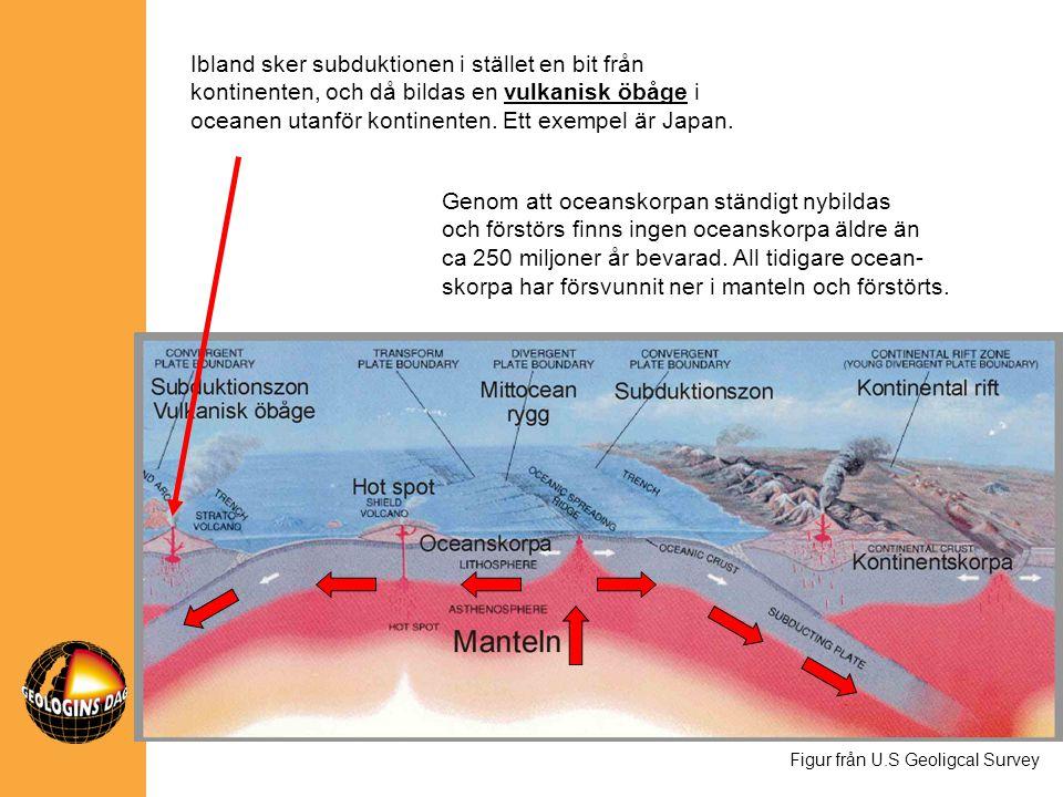Ibland sker subduktionen i stället en bit från kontinenten, och då bildas en vulkanisk öbåge i oceanen utanför kontinenten. Ett exempel är Japan. Figu