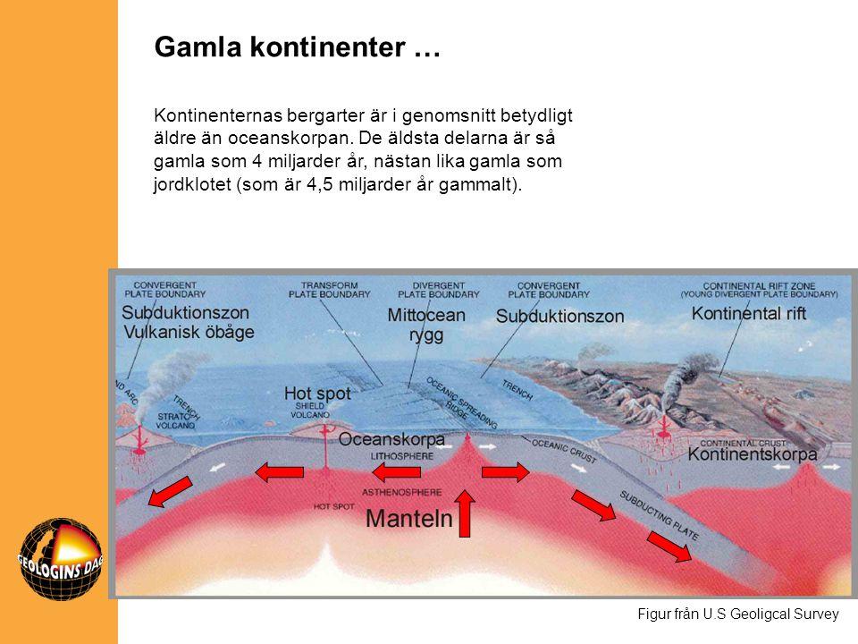 Kontinenternas bergarter är i genomsnitt betydligt äldre än oceanskorpan. De äldsta delarna är så gamla som 4 miljarder år, nästan lika gamla som jord