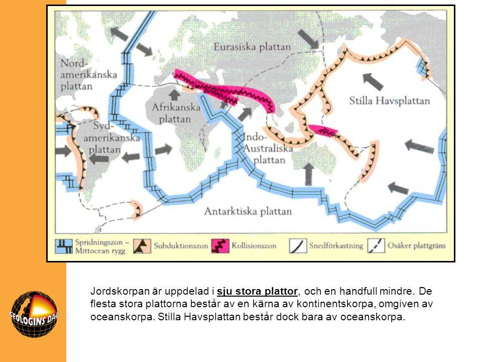 Jordskorpan är uppdelad i sju stora plattor, och en handfull mindre. De flesta stora plattorna består av en kärna av kontinentskorpa, omgiven av ocean