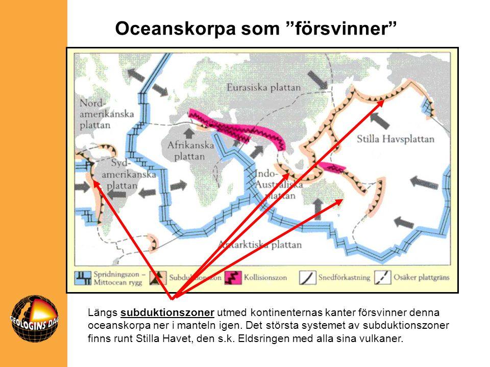 Längs subduktionszoner utmed kontinenternas kanter försvinner denna oceanskorpa ner i manteln igen. Det största systemet av subduktionszoner finns run