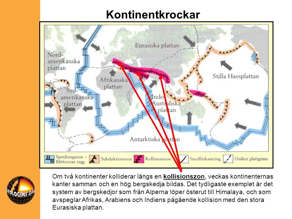 Om två kontinenter kolliderar längs en kollisionszon, veckas kontinenternas kanter samman och en hög bergskedja bildas. Det tydligaste exemplet är det