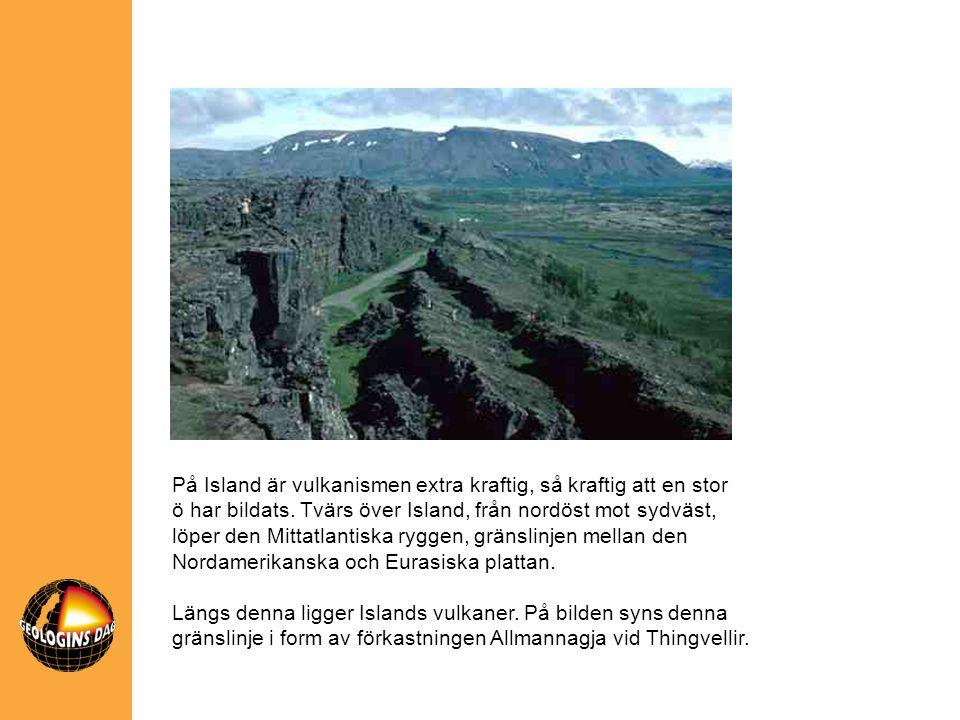 På Island är vulkanismen extra kraftig, så kraftig att en stor ö har bildats. Tvärs över Island, från nordöst mot sydväst, löper den Mittatlantiska ry