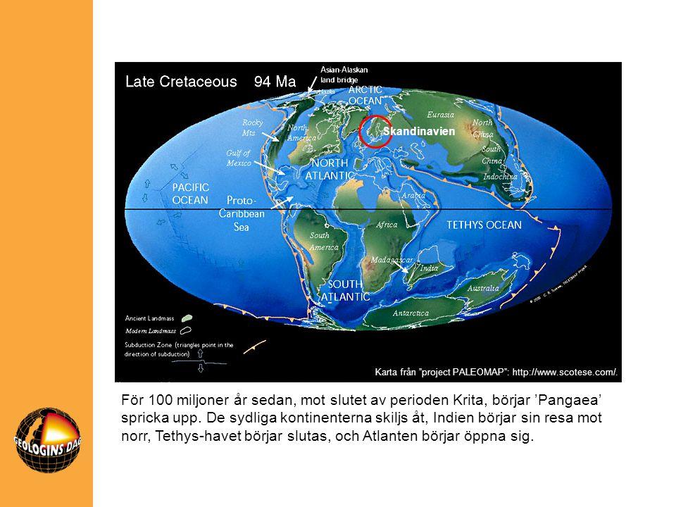 Skandinavien För 100 miljoner år sedan, mot slutet av perioden Krita, börjar 'Pangaea' spricka upp. De sydliga kontinenterna skiljs åt, Indien börjar