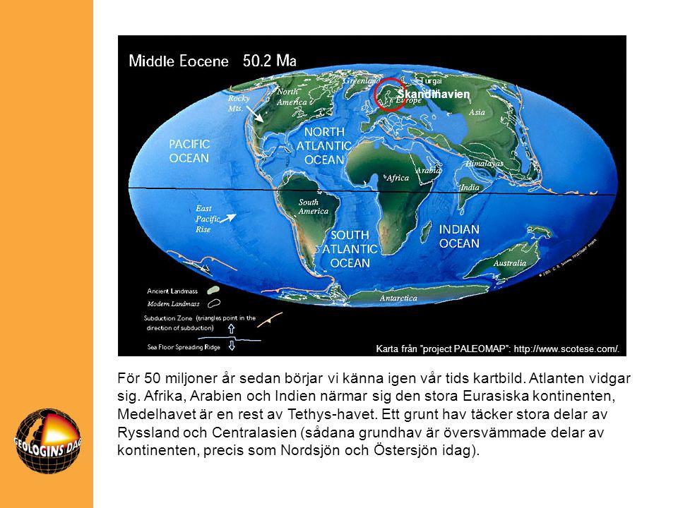 Skandinavien För 50 miljoner år sedan börjar vi känna igen vår tids kartbild. Atlanten vidgar sig. Afrika, Arabien och Indien närmar sig den stora Eur