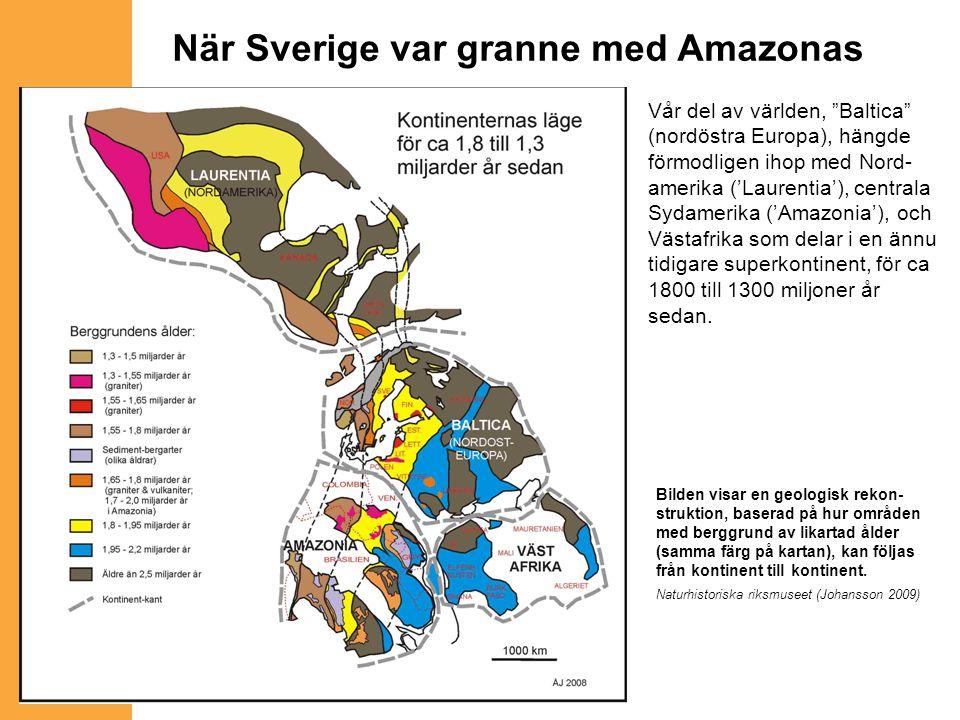 """Vår del av världen, """"Baltica"""" (nordöstra Europa), hängde förmodligen ihop med Nord- amerika ('Laurentia'), centrala Sydamerika ('Amazonia'), och Västa"""