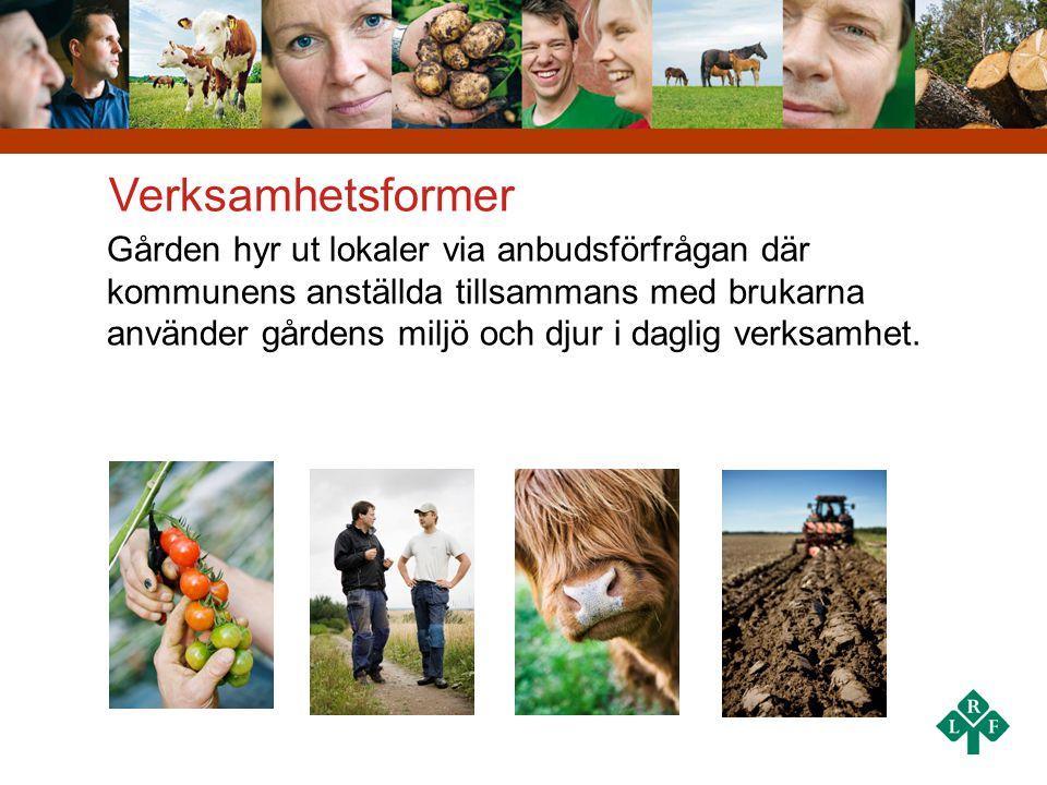 Verksamhetsformer Gården hyr ut lokaler via anbudsförfrågan där kommunens anställda tillsammans med brukarna använder gårdens miljö och djur i daglig