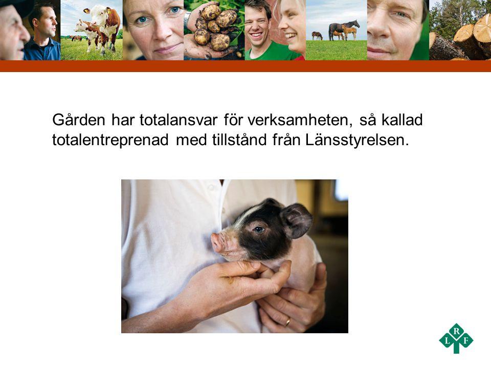 Fördelar med grön omsorg: •Arbete med växter och djur som ger meningsfullhet där man själv vårdar istället för att bli vårdad •Utevistelsens positiva inverkan på hälsan •Ökad rörlighet •Känslan av sammanhang •Mångfald i arbete och aktiviteter •Integration genom kontakter med lantbrukare och anställda •Synliga resultat