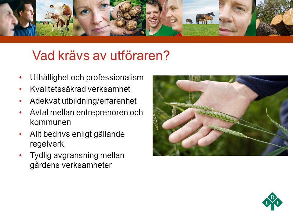 Nulägesanalys Grön omsorg Styrkor • Stort intresse bland LRFs medlemmar att starta Grön omsorg • Kunderna till de som driver en Grön omsorgsverksamhet är nöjda • Alltmer evidens kring naturens och djurens främjande för vår hälsa Svagheter • Många företagare vill satsa på Grön rehab • Många har svårt att skilja på Grön omsorg & Grön rehab • Få företagare har en tydlig produkt när man vänder sig till potentiell kund • Grön omsorg är nytt i Sverige, potentiella kunder känner ej till konceptet Möjligheter • Behovet av daglig verksamhet, särskilda boenden mm ökar • Lag om valfrihetssystem (LoV) • Psykiatrisatsningen • Regeringen vill stimulera småföretagande och privata aktörer inom vård och omsorg Hot • Skattesänkningar innebär åtstramningar i offentlig sektor • Lågkonjunkturen • Okunskap och motstånd mot privata aktörer inom vård och omsorg inom vissa kommuner