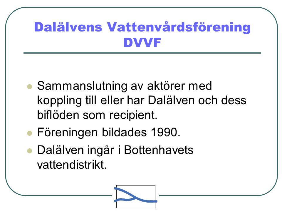 Dalälvens Vattenvårdsförening DVVF  Sammanslutning av aktörer med koppling till eller har Dalälven och dess biflöden som recipient.
