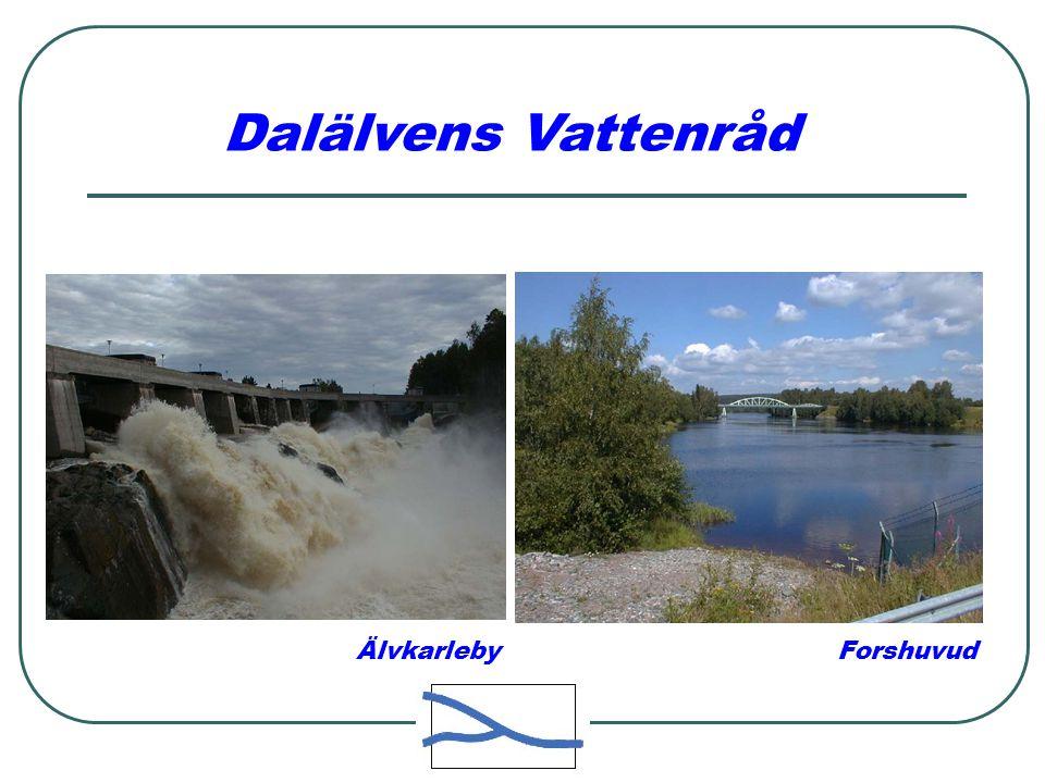 Älvkarleby Forshuvud Dalälvens Vattenråd