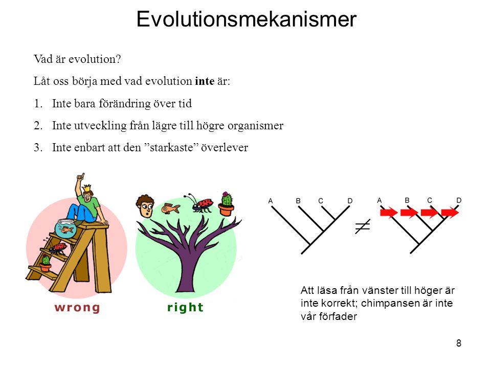 8 Evolutionsmekanismer Vad är evolution? Låt oss börja med vad evolution inte är: 1.Inte bara förändring över tid 2.Inte utveckling från lägre till hö
