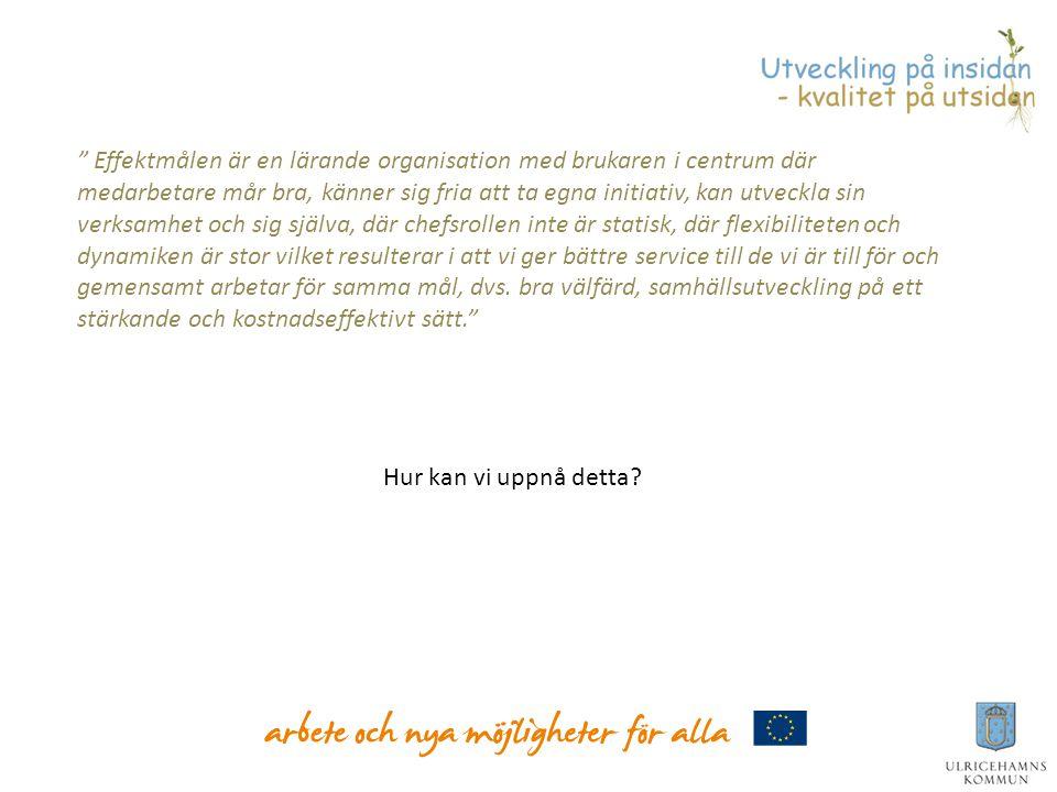 Utveckla och säkerställa styr- och ledningssystem inkl processtyrning Arbeta med det kommunalpolitiska handlingsprogrammet Stärka ledarskap och medarbetarskap i Ulricehamns kommun Ledningsgruppens prioriterade områden 2011-2012