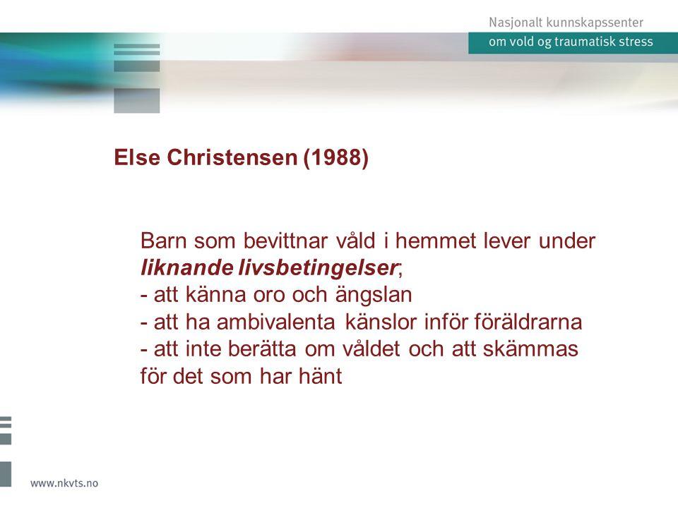 Else Christensen (1988) Barn som bevittnar våld i hemmet lever under liknande livsbetingelser; - att känna oro och ängslan - att ha ambivalenta känslo