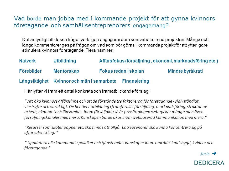 Vad borde man jobba med i kommande projekt för att gynna kvinnors företagande och samhällsentreprenörers engagemang ? Det är tydligt att dessa frågor