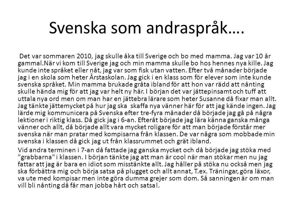 Svenska som andraspråk….Det var sommaren 2010, jag skulle åka till Sverige och bo med mamma.
