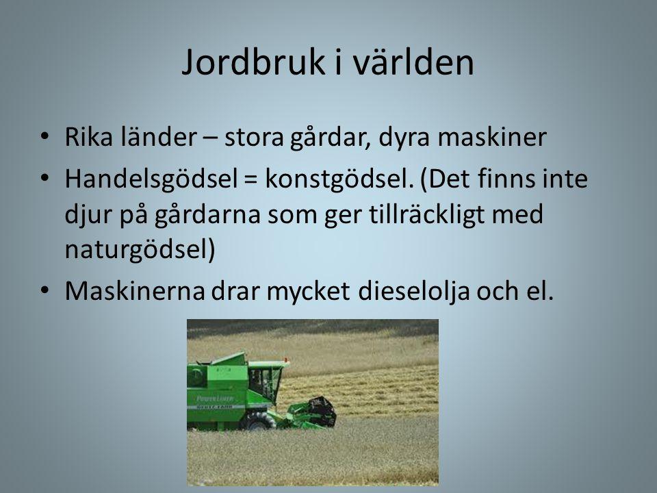 Jordbruk i världen • Rika länder – stora gårdar, dyra maskiner • Handelsgödsel = konstgödsel. (Det finns inte djur på gårdarna som ger tillräckligt me