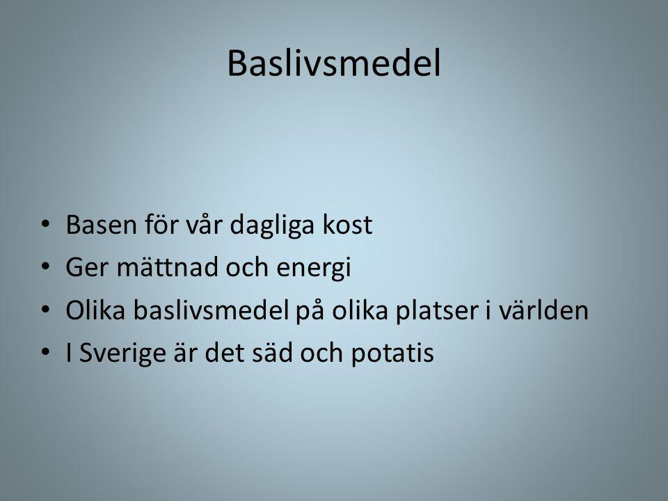 Baslivsmedel • Basen för vår dagliga kost • Ger mättnad och energi • Olika baslivsmedel på olika platser i världen • I Sverige är det säd och potatis