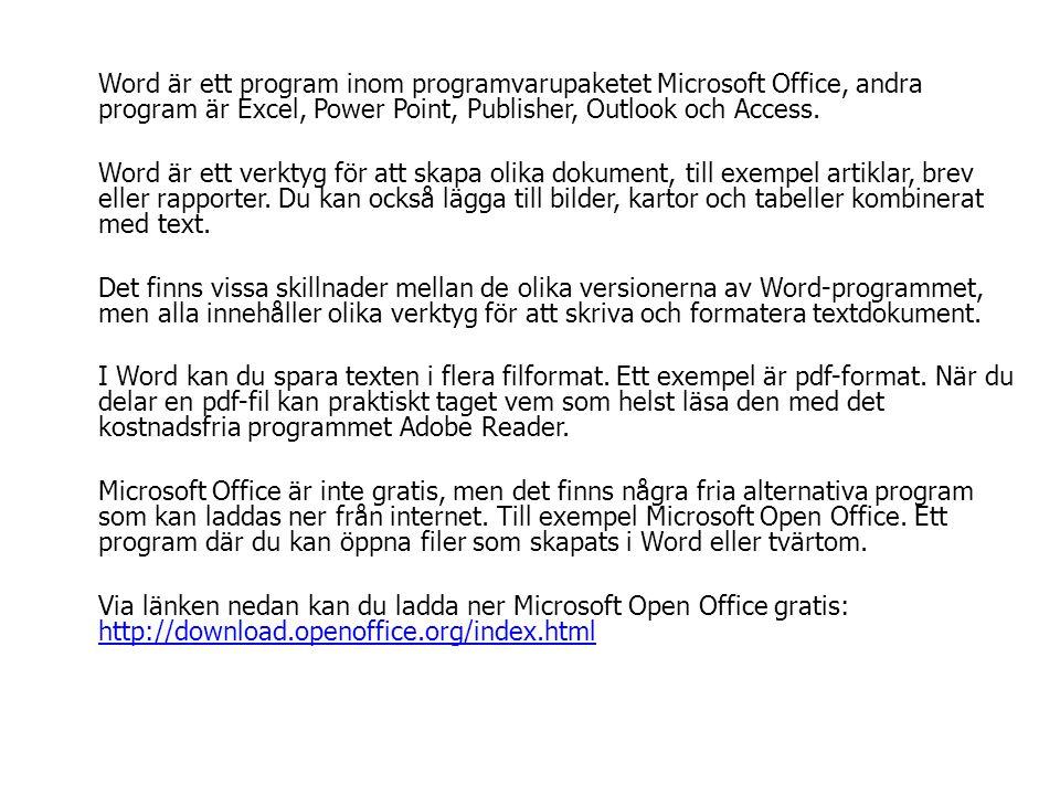 Word är ett program inom programvarupaketet Microsoft Office, andra program är Excel, Power Point, Publisher, Outlook och Access. Word är ett verktyg