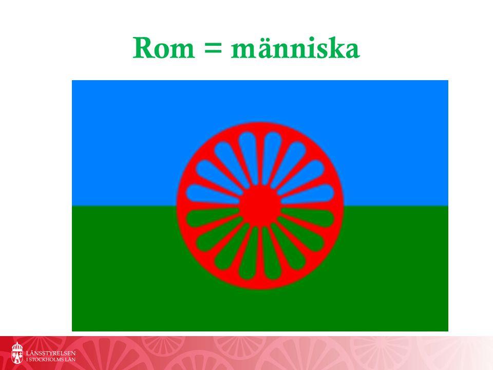 Romsk inkludering Strategi för romsk inkludering 2012-2032 Mål Den rom som fyller 20 år 2032 ska ha likvärdiga möjligheter i livet som den som är icke-rom
