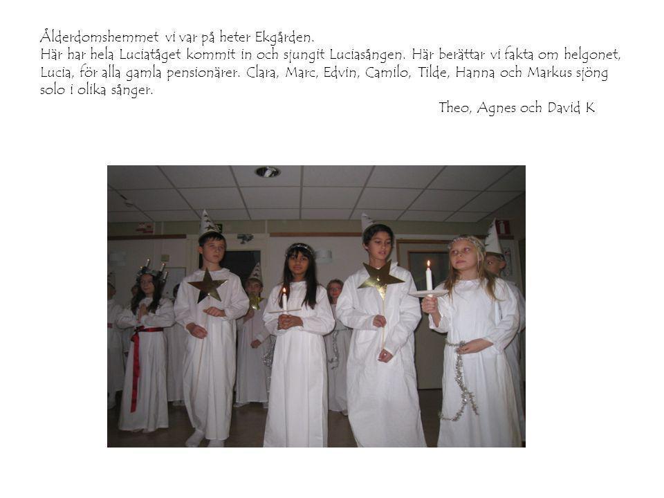 Ålderdomshemmet vi var på heter Ekgården. Här har hela Luciatåget kommit in och sjungit Luciasången. Här berättar vi fakta om helgonet, Lucia, för all