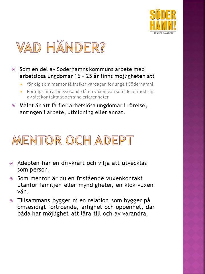  Som en del av Söderhamns kommuns arbete med arbetslösa ungdomar 16 – 25 år finns möjligheten att  för dig som mentor få insikt i vardagen för unga i Söderhamn.