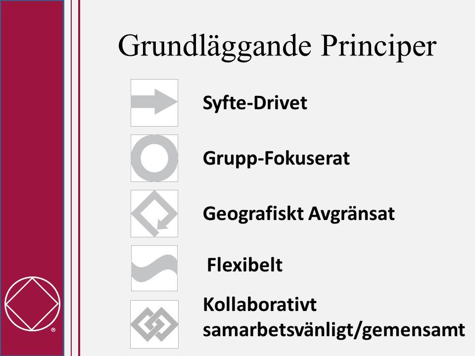  Grundläggande Principer Syfte-Drivet Flexibelt Geografiskt Avgränsat Grupp-Fokuserat Kollaborativt samarbetsvänligt/gemensamt