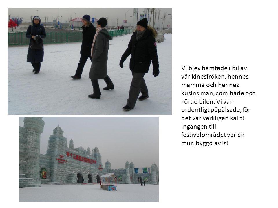 Eftersom vi var med kineser, fick vi posera framför objektet som skulle fotograferas.