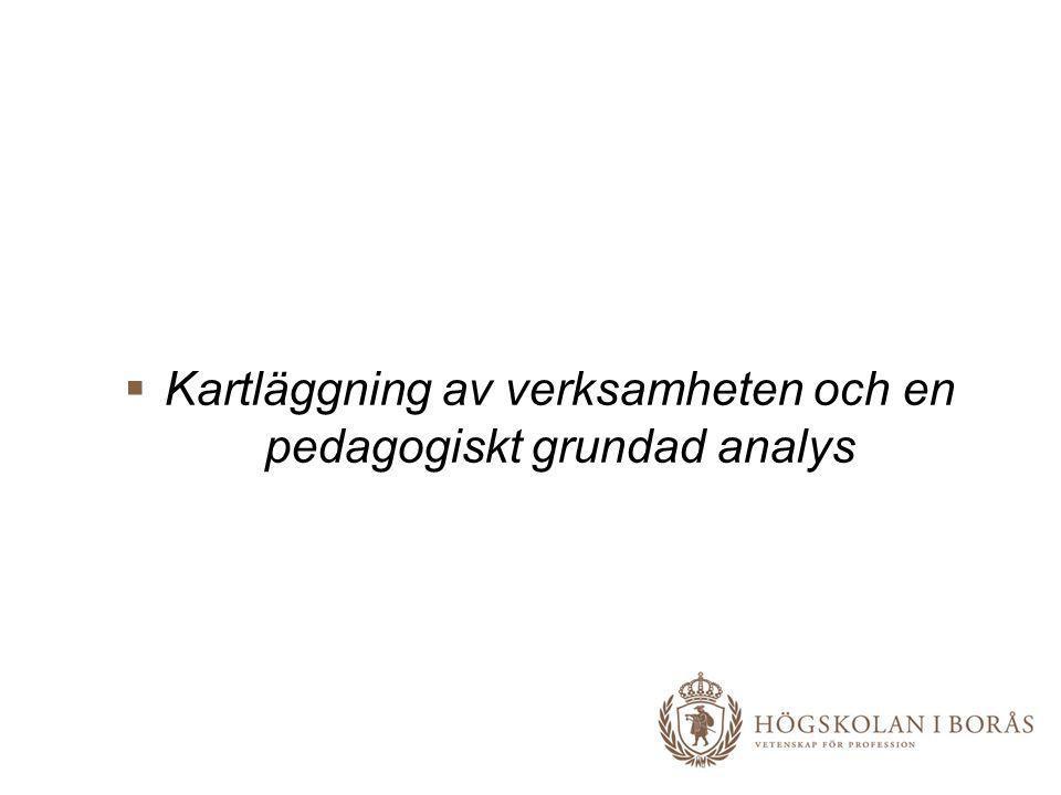  Kartläggning av verksamheten och en pedagogiskt grundad analys