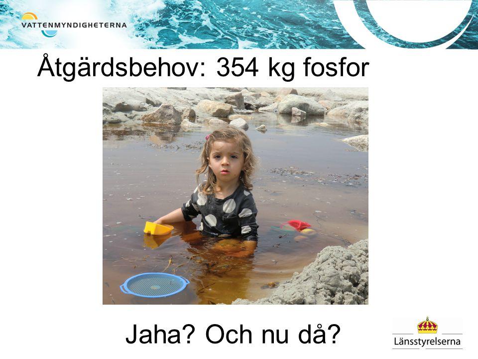 Åtgärdsbehov: 354 kg fosfor Jaha? Och nu då?