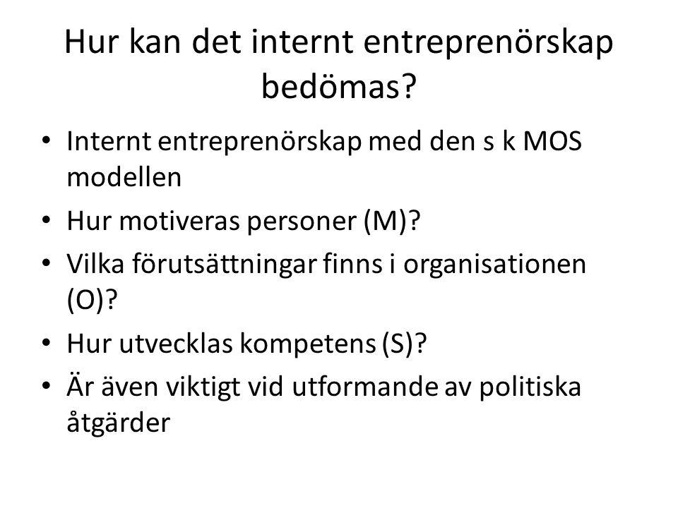 Hur kan det internt entreprenörskap bedömas.