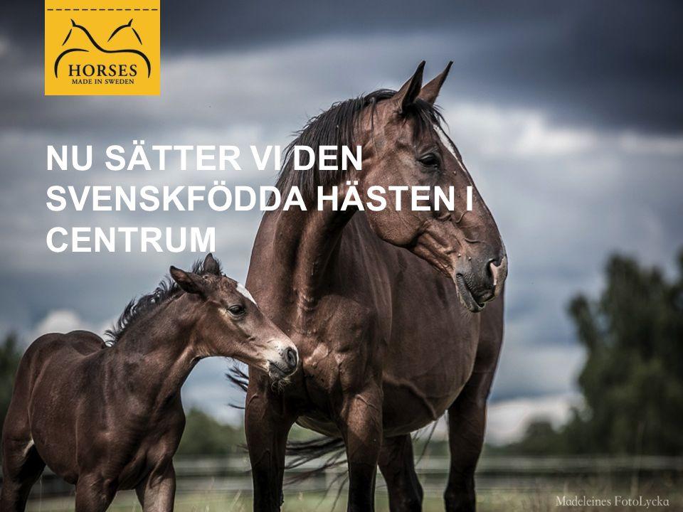 VARFÖR BEHÖVS HORSES MADE IN SWEDEN.