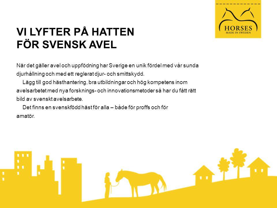 VI LYFTER PÅ HATTEN FÖR SVENSK AVEL När det gäller avel och uppfödning har Sverige en unik fördel med vår sunda djurhållning och med ett reglerat djur- och smittskydd.