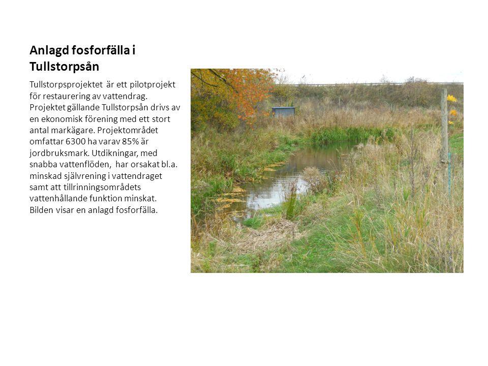 Anlagd fosforfälla i Tullstorpsån Tullstorpsprojektet är ett pilotprojekt för restaurering av vattendrag. Projektet gällande Tullstorpsån drivs av en