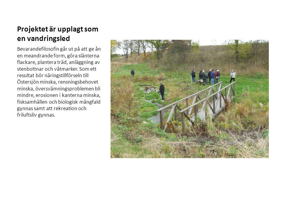 Projektet är upplagt som en vandringsled Bevarandefilosofin går ut på att ge ån en meandrande form, göra slänterna flackare, plantera träd, anläggning