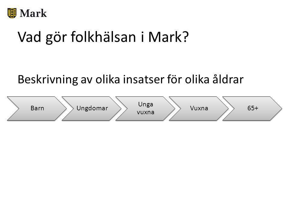 Nytt folkhälsoavtal med Västra Götaland från år 2013 • Tydligare formulerade mål från VG • Gemensamt uppföljningssystem • Fortsatt stort fokus på goda uppväxtvillkor för barn och unga