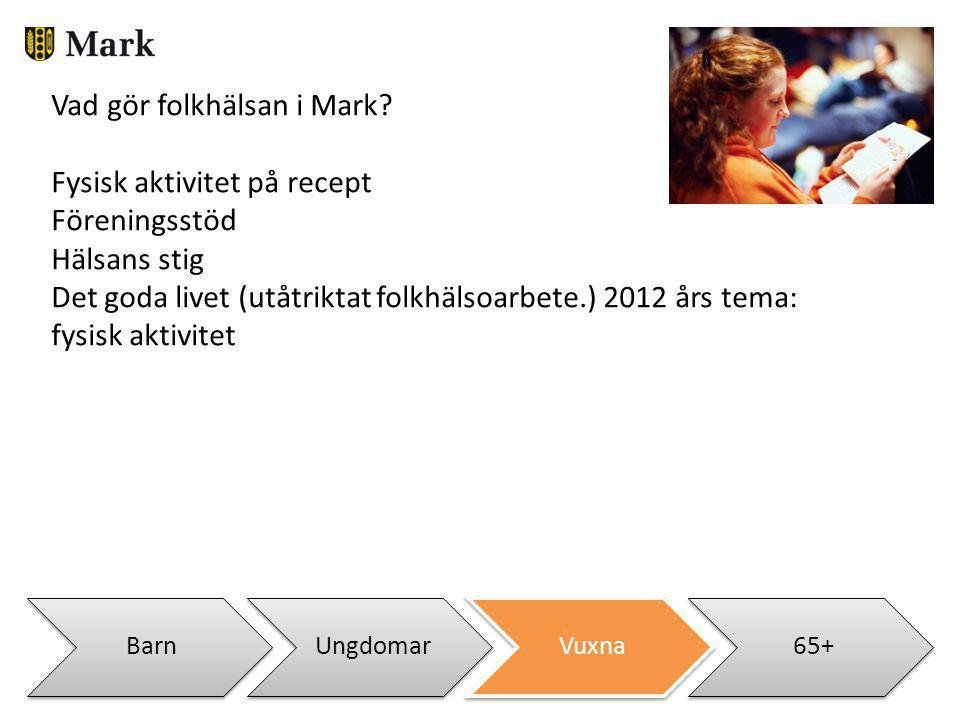 BarnUngdomarVuxna65+ Vad gör folkhälsan i Mark? Fysisk aktivitet på recept Föreningsstöd Hälsans stig Det goda livet (utåtriktat folkhälsoarbete.) 201
