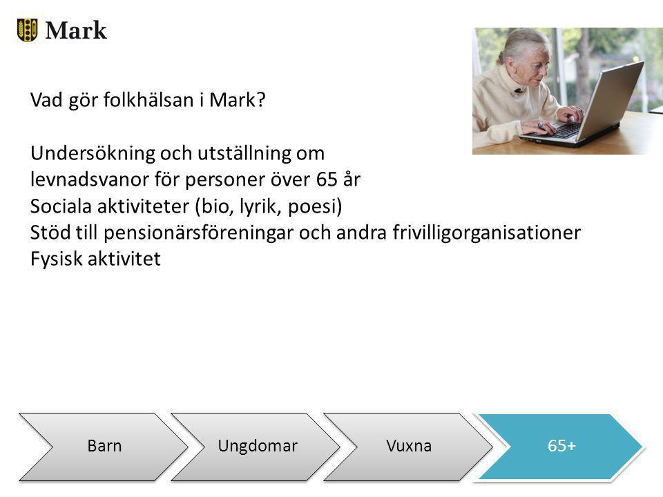 BarnUngdomarVuxna65+ Vad gör folkhälsan i Mark? Undersökning och utställning om levnadsvanor för personer över 65 år Sociala aktiviteter (bio, lyrik,