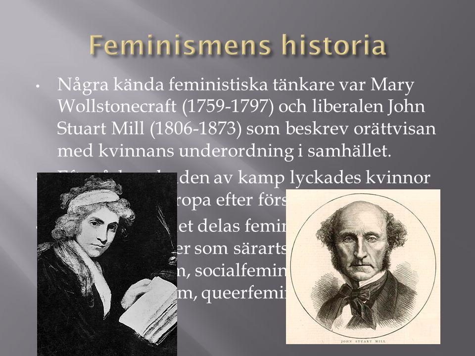 • Några kända feministiska tänkare var Mary Wollstonecraft (1759-1797) och liberalen John Stuart Mill (1806-1873) som beskrev orättvisan med kvinnans