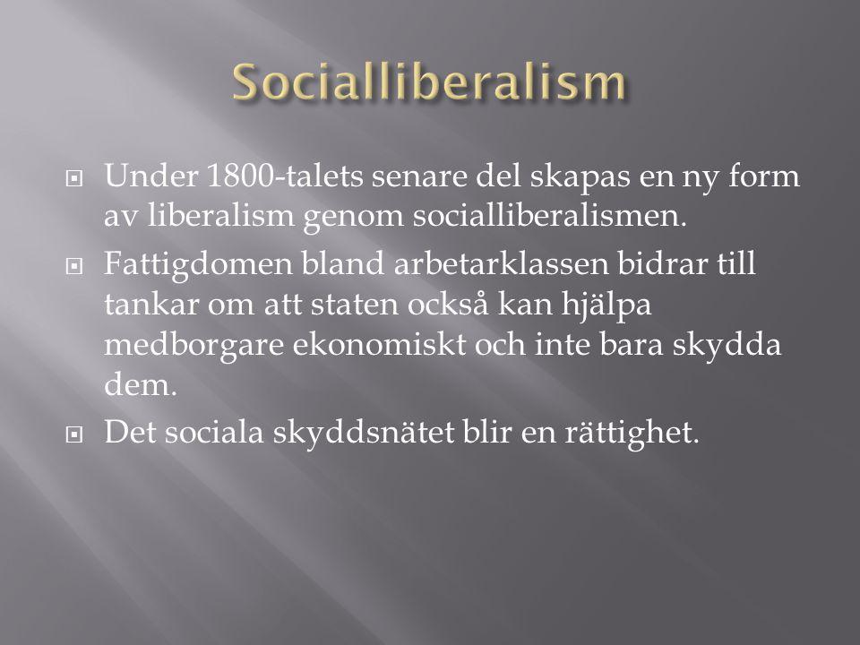  Under 1800-talets senare del skapas en ny form av liberalism genom socialliberalismen.  Fattigdomen bland arbetarklassen bidrar till tankar om att