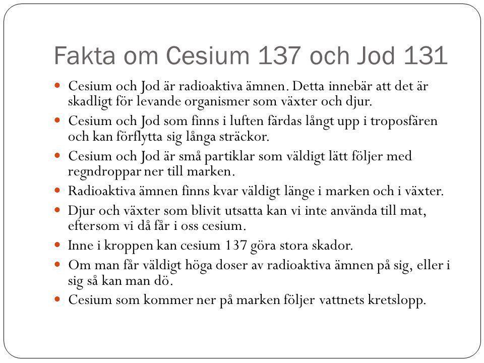 Fakta om Cesium 137 och Jod 131  Cesium och Jod är radioaktiva ämnen. Detta innebär att det är skadligt för levande organismer som växter och djur. 