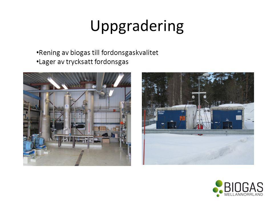 Uppgradering • Rening av biogas till fordonsgaskvalitet • Lager av trycksatt fordonsgas